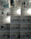 пусть эротическое фото из скрытой камеры жена